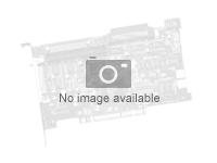 Dell PowerEdge HBA330 - Kontrollerkort - SAS 12Gb/s - 1.2 GBps - PCIe 3.0 Mini Card - för PowerEdge R430, R530, R630, R640, R6415, R730, R730xd, R740, R740xd, R7415, R830 405-AAJW